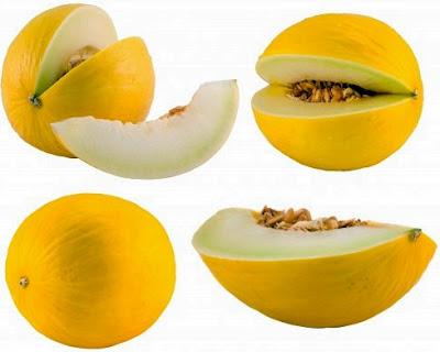 melon untuk menyehatkan organ pencernaan