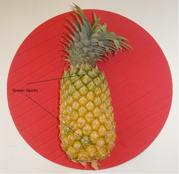 how to tell when a pineapple is ripe to pick