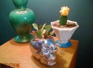 Mercury Glass Skull and Color Dipped Succulent Planters