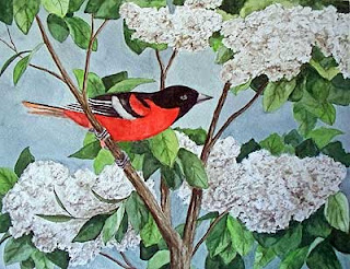 Baltimore Oriole watercolor painting
