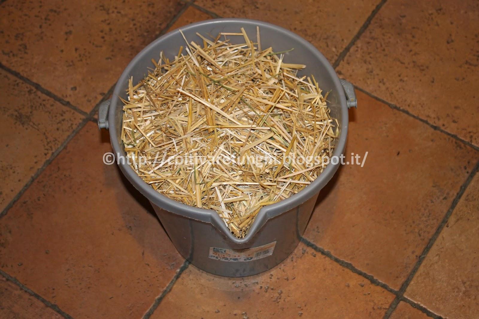 Coltivare funghi in casa e in giardino pastorizzare ed for Piani di casa di balla di fieno