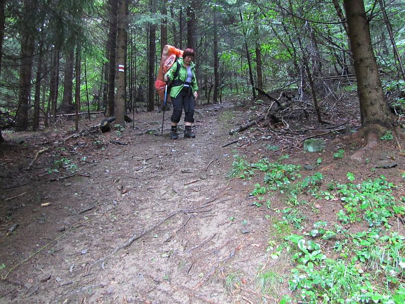 Strome zejście przed wyjściem z lasu.