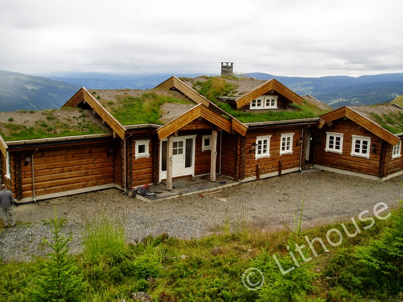 Building eco wooden house scandinavian style log houses Wooden homes to build