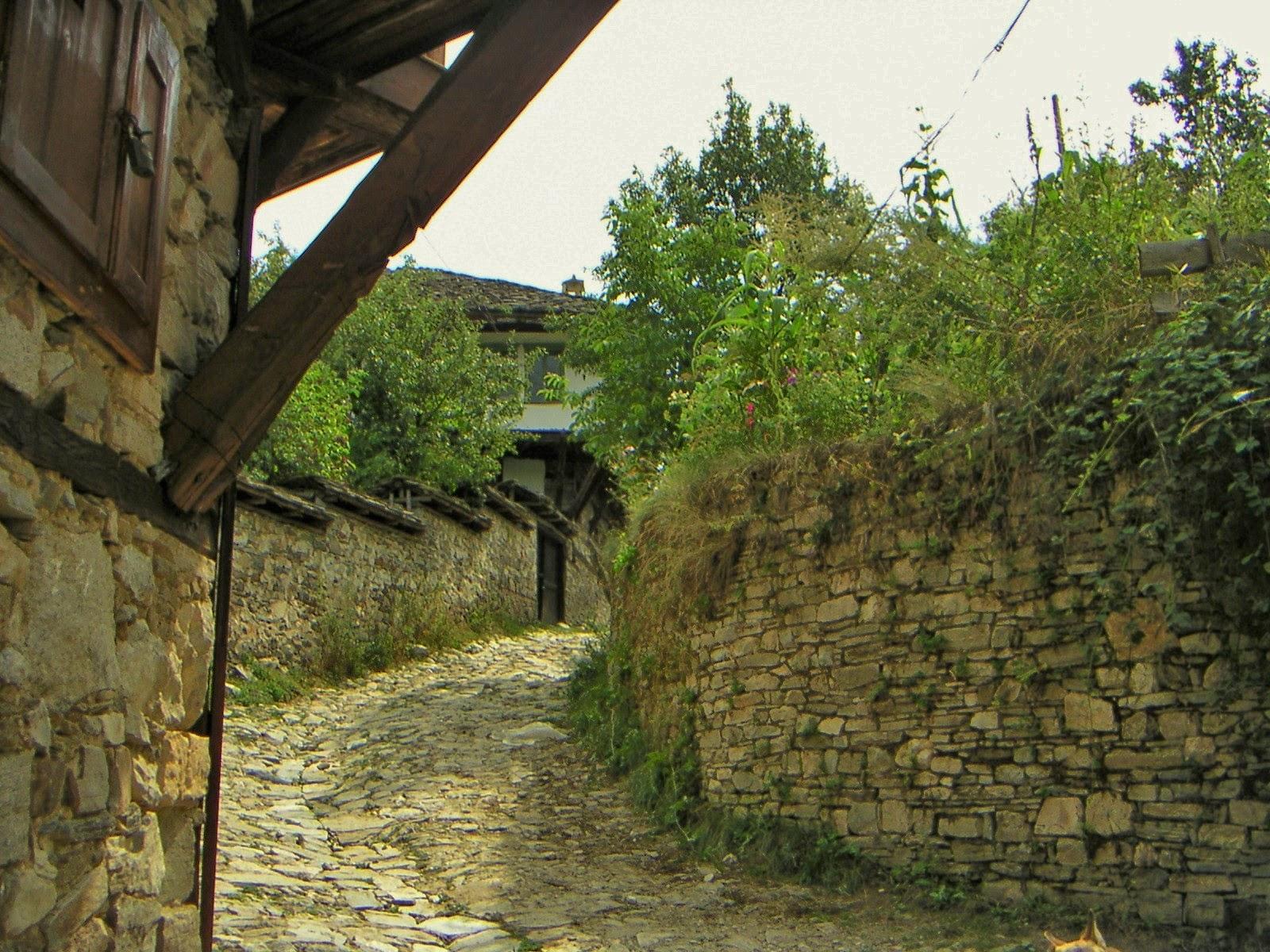 село Долен 3