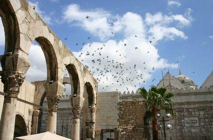 Cicci 39 s tour unesco citt vecchia di damasco for Citta della siria che da nome a un pino