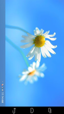 Fake Windows 8