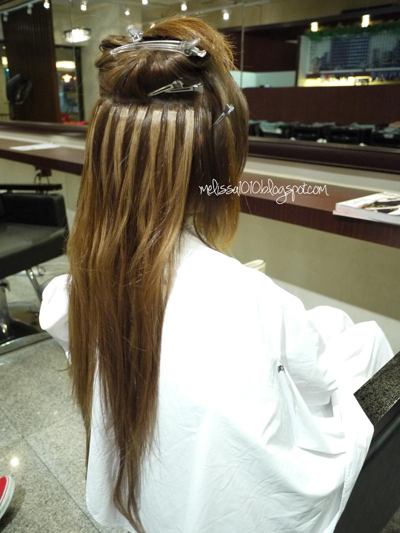 Hair Extension Melissa1010