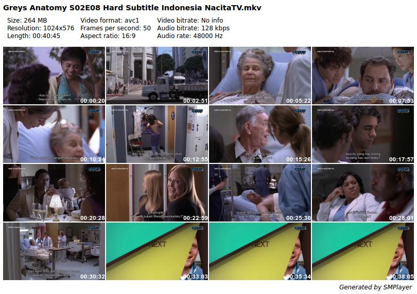 Download Video Serial Greys Anatomy S02e08 Hard Subtitle Indonesia