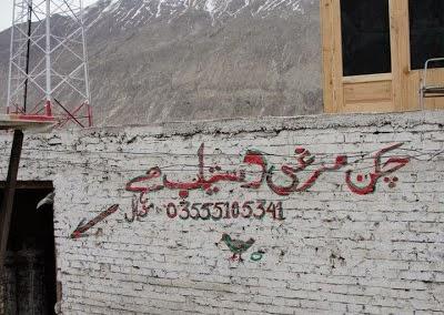 Pakistani Funny Banners (9)