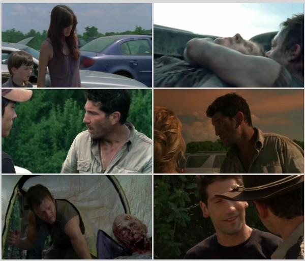 The Walking Dead Temporada 2 HD 720p Latino