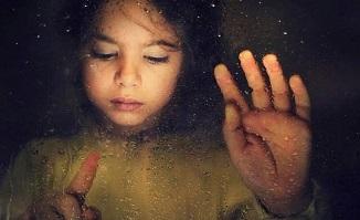 Tony Berbece 🔴 Jurnalul unui copil ai cărui părinți au divorțat