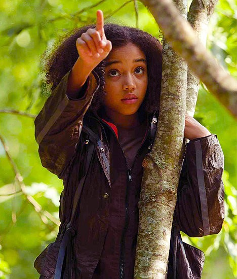 Rue The Hunger Games 2012 movieloversreviews.blogspot.com