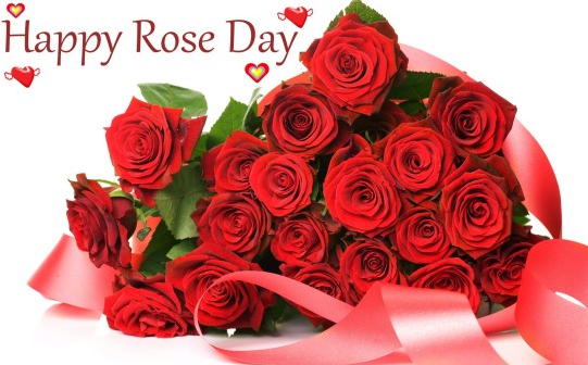 Propose Your Love on Rose Day
