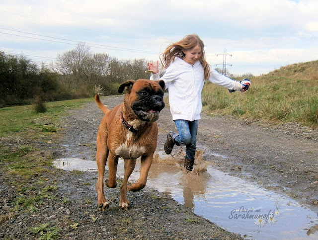 girl and boxerdog muddy puddles