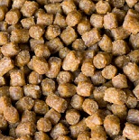 small fish pellets