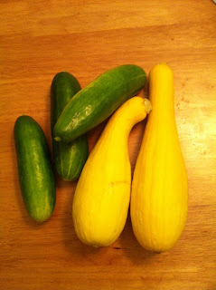 a day's harvest - cucumbers and squash