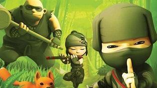 mini-ninja