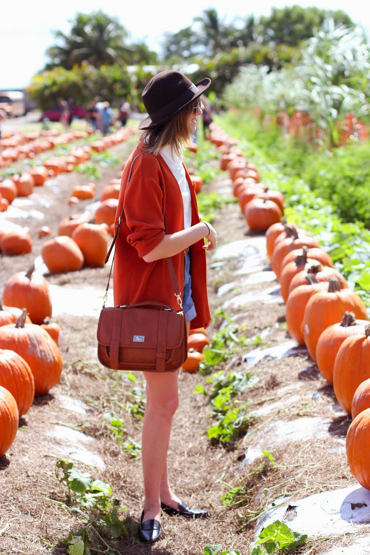 nyc vintage blog, vintage fashion blog, nyc fashion blog, fall outfit, vintage cutoffs, pumpkin patch style