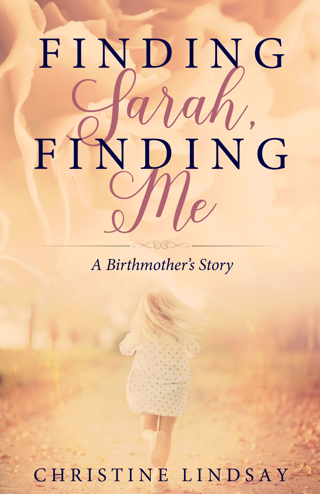 Finding Sarah, Finding Me: A Birthmother's Story