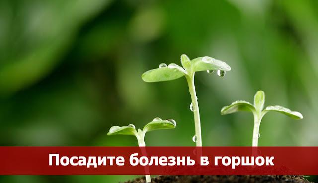 Медицинская энциклопедия болезни сердца