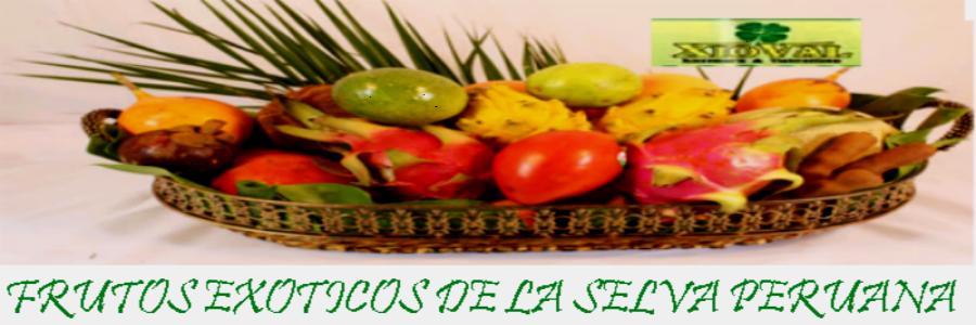 FRUTOS EXOTICOS DE LA SELVA PERUANA