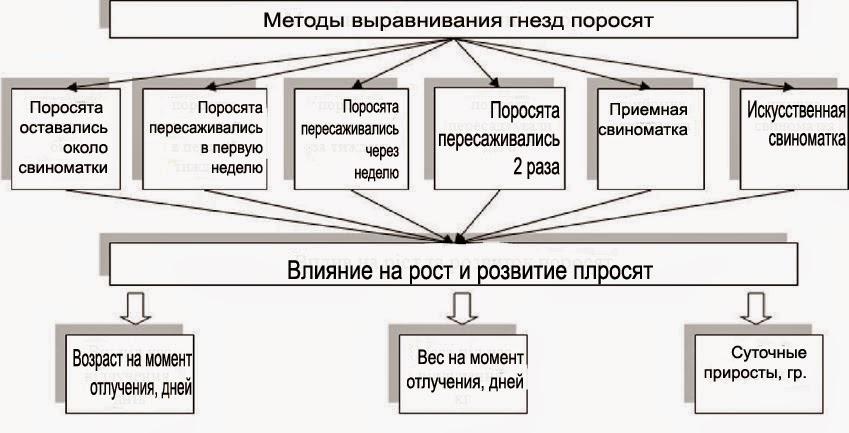 Схема хозяйственного опыта