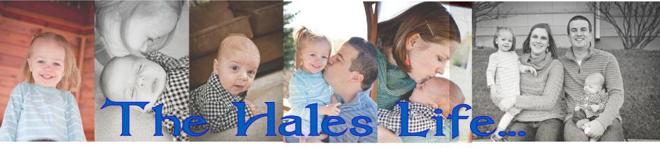A Hales Life