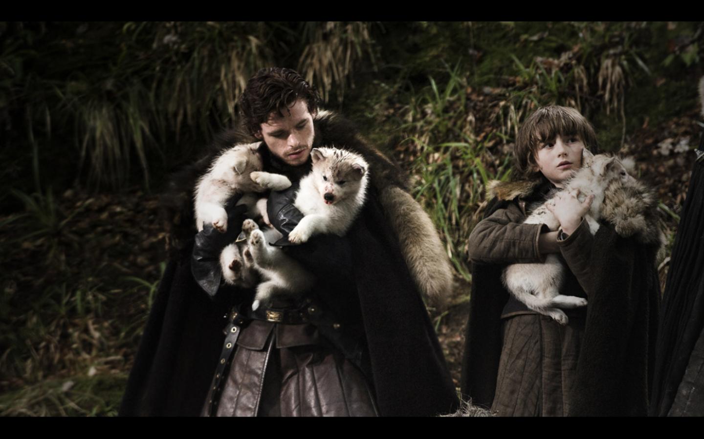 http://3.bp.blogspot.com/-9LMMFBCjbn8/T6JD63vwldI/AAAAAAAACA4/UxQHiFqcu24/s1600/the-dya-wolf-pups-the-stark-pups-game-of-thrones-amazing-wallpapers.png