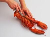 udang lobster disigar tengah