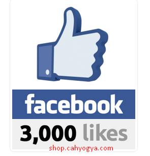 Jasa Tambah Like Facebook Fans Page, Like Photo Murah