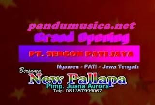 OM New Pallapa Terbaru 2012 Live Pati
