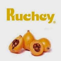 PRODUCTOS RUCHEY