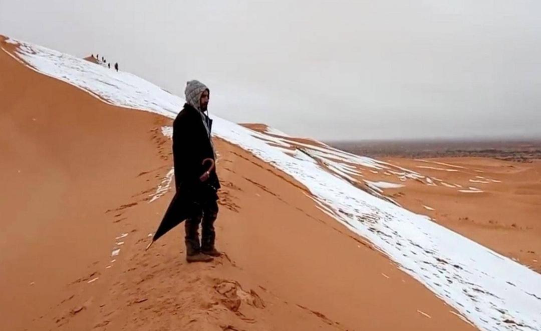 salji gurun sahara