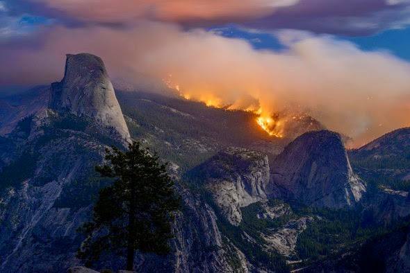 Razed alarm: wildfire rages through part of California's Yosemite National Park this month (Credit: PBJamesPhoto via Wikimedia Commons)  Click to enlarge.