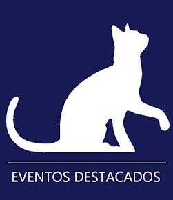 Eventos Destacados Cultural 2015