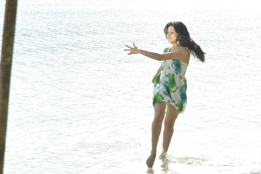 , Ritu Barmecha Hot Beach Stills