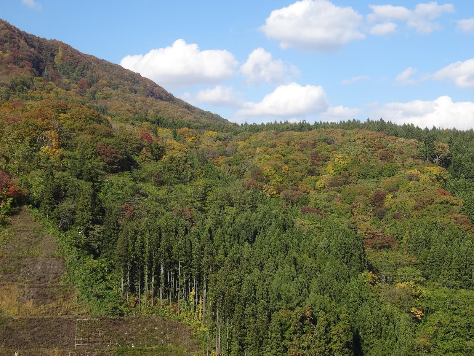 山,森林,津軽ダム〈著作権フリー画像〉Free Stock Photos