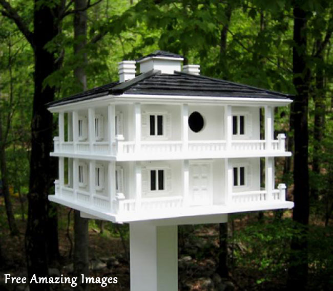 Free Amazing Images: 26 Best And Most Creative Bird House Designs
