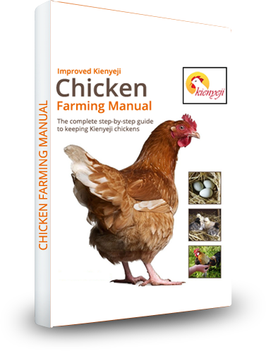 Order Your Kienyeji Chicken Manual Now!!