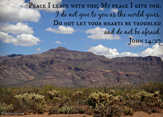 Do not let your hearts be troubled John 14:27