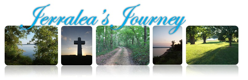 Jerralea&#39;s Journey