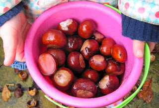 Conkers in a pink bucket