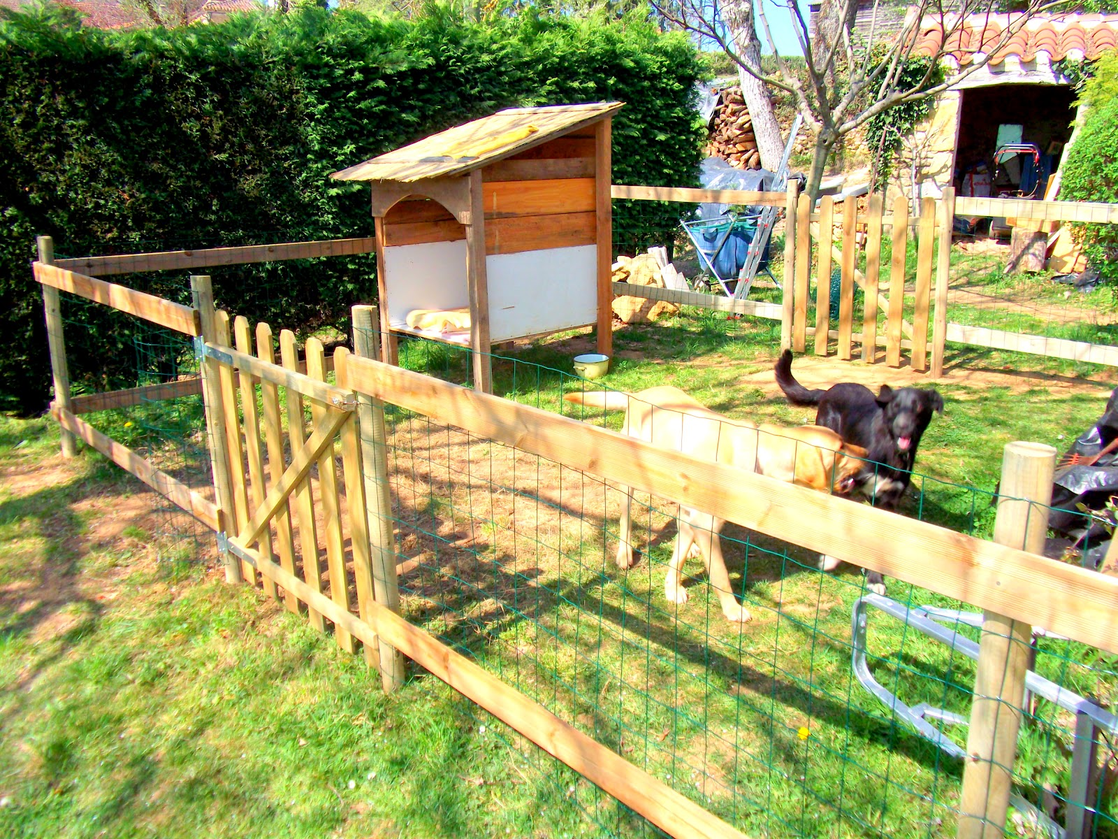 awesome dog kennels viewing gallery