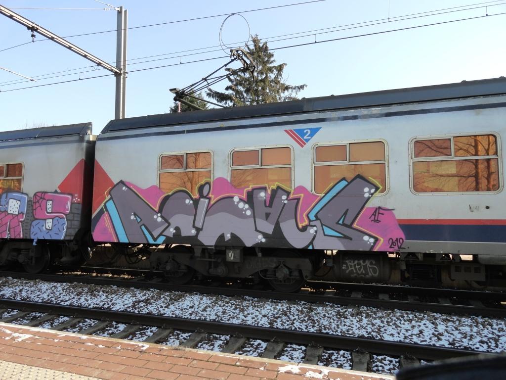 Alors Animals Graffiti