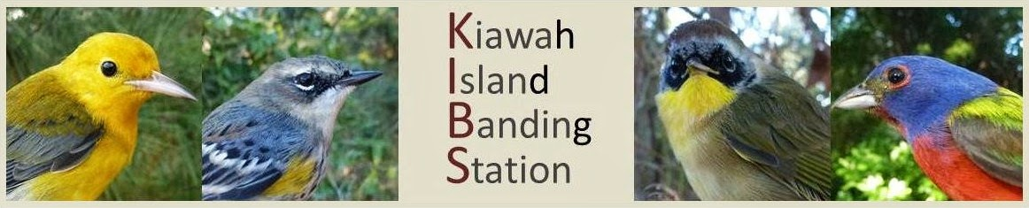Kiawah Island Banding Station