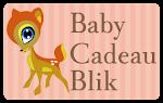 Een origineel babycadeau? Babycadeaublik.nl