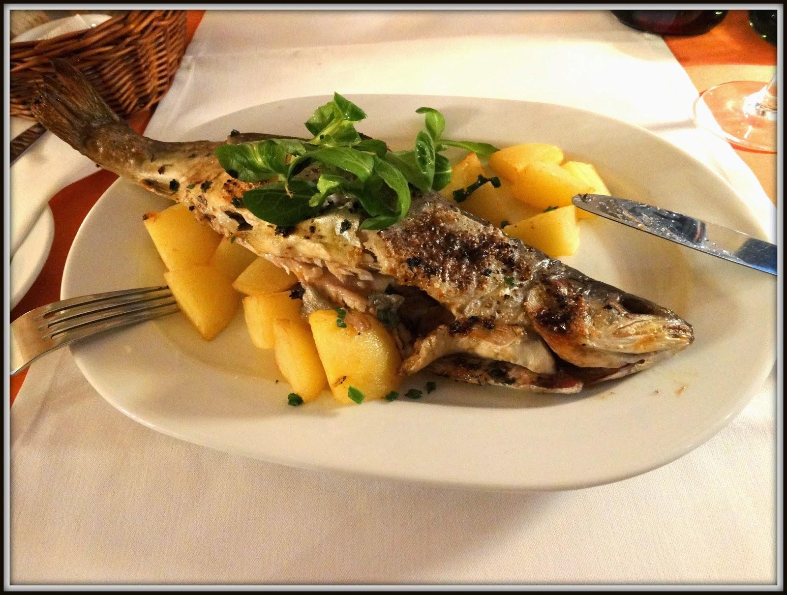Restauracja Aperitif, Kraków, sandacz z młodymi ziemniakami