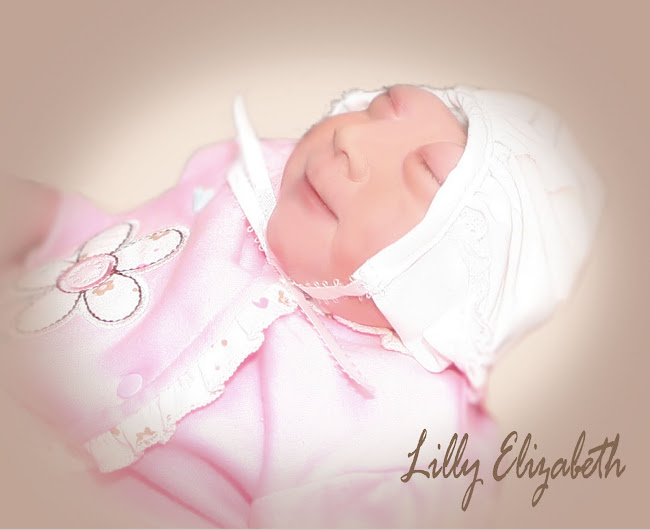Our Miracle Lilly Elizabeth
