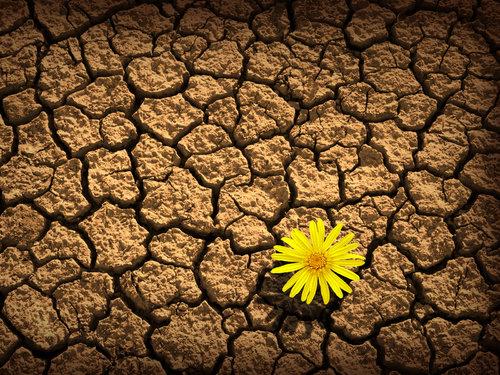 02/07 - O cristão precisa viver de esperança