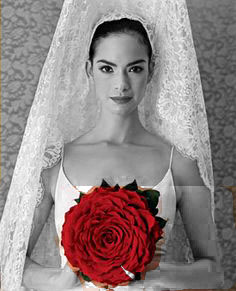 http://www.luciasecasa.com/labodadelucia/vestidos-de-novia-flamencos/